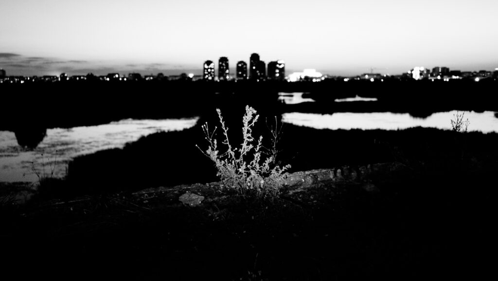 b&wcity_dfgramaphotography